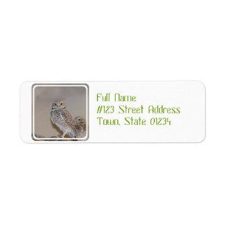 Small Owl Return Address Labels