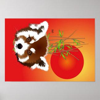 Small panda (Ailurus fulgens) poster