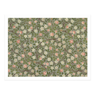 Small pink and white flower wallpaper design postcard