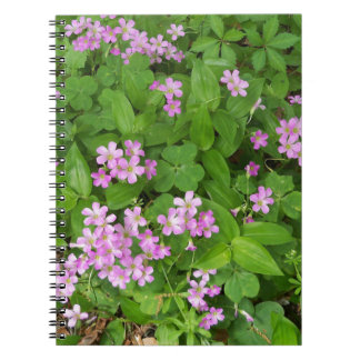 Small pink delicate wildflowers spiral notebook