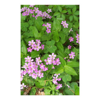 Small pink delicate wildflowers stationery