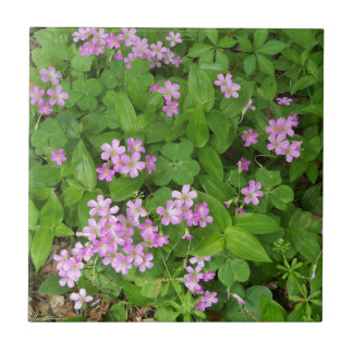 Small pink delicate wildflowers tile