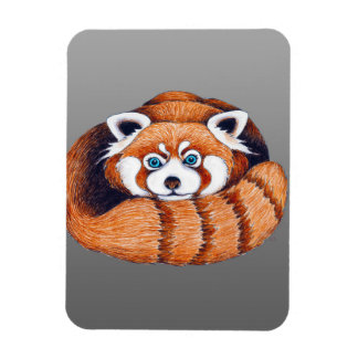 Small Red Panda on Grey Magnet