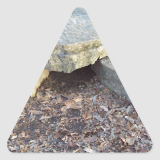 Small Rock Formation Triangle Sticker