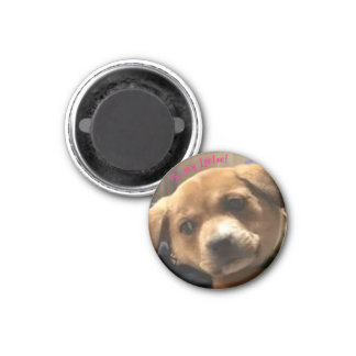 Small, Round Sassy Leeloo! Magnet