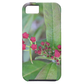 Small Spring Blooms iPhone 5 Covers