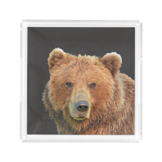 Small Square Tray w/ grizzly bear
