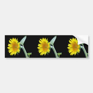 Small Sunflower Bumper Sticker