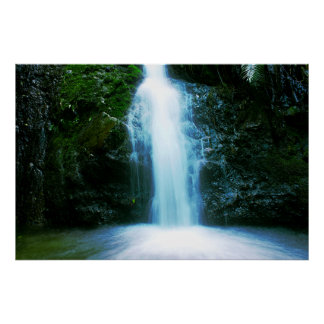 Small Tropical Rainforest Waterfall Poster
