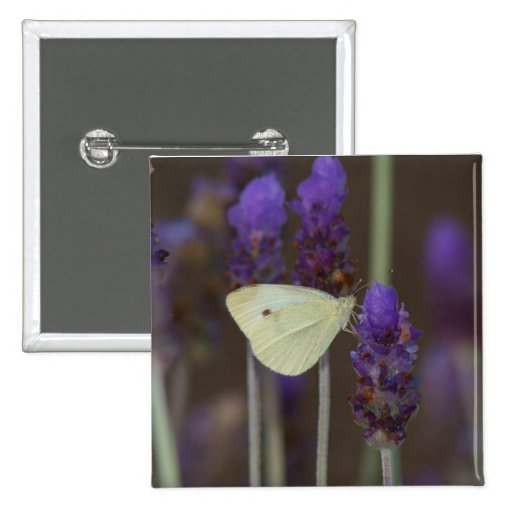 Small White and Lavender Pin