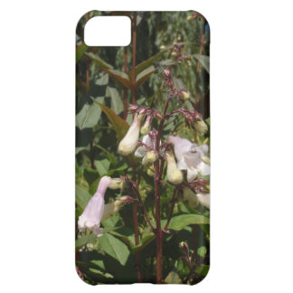 Small White Flower iPhone 5C Case