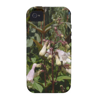 Small White Flower iPhone 4/4S Cases