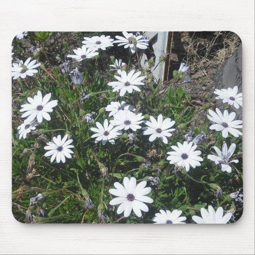 Small White Flower Mousepad