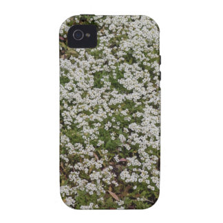 Small White Flowers iPhone 4 Cover