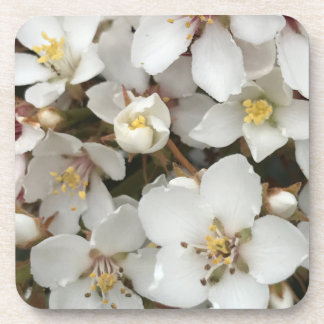 Small White Flowers Coaster