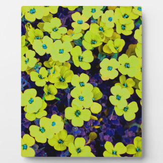 Small Yellow Flowers Plaque