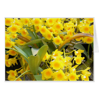 Small Yellow Orchids Card