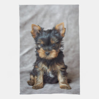 Small yorkie kitchen towel
