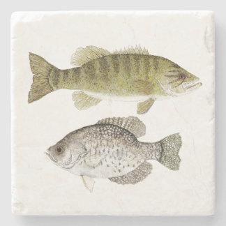 Smallmouth Bass and Crappie Coaster