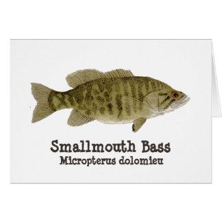 Smallmouth Bass Card