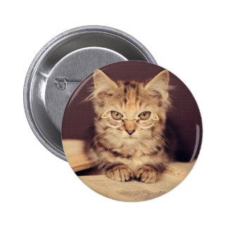 smart cat buttons