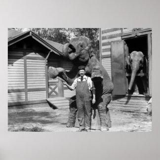 Smart Elephant Trick, 1910s Poster