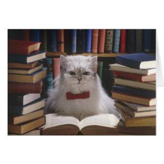 Smart graduation cat card