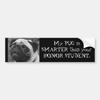 Smart Pug Bumper Sticker