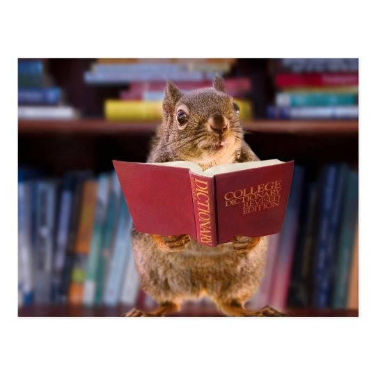 Smart Squirrel Reading a Dictionary Postcard   Zazzle.ca