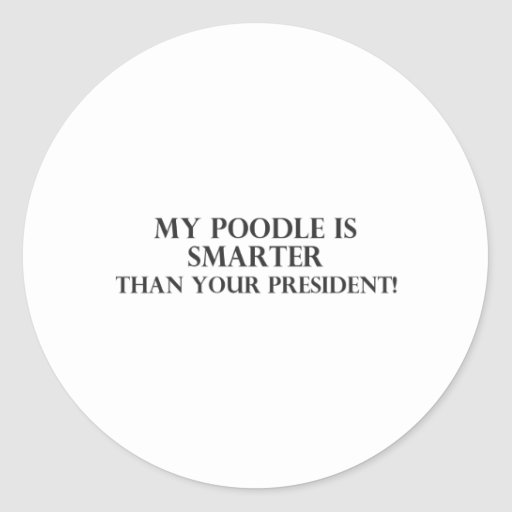 Smarter Than The President 3 Round Stickers