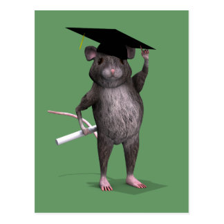 Smartest Rat In Town Post Card
