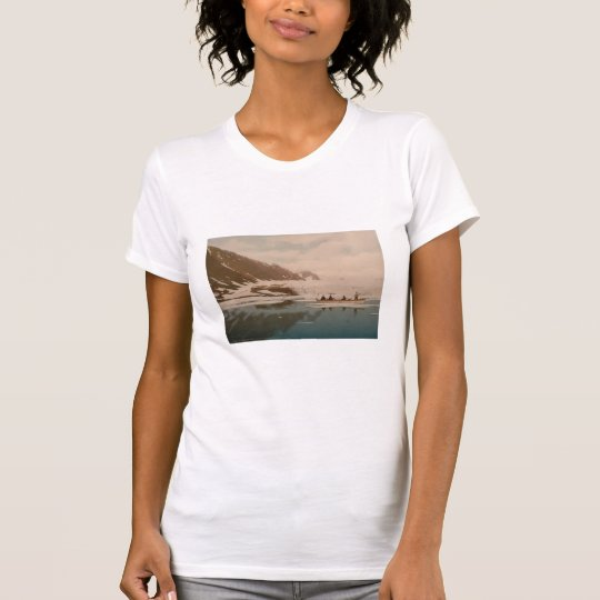 Smeerenburg I, Svalbard, Norway T-Shirt