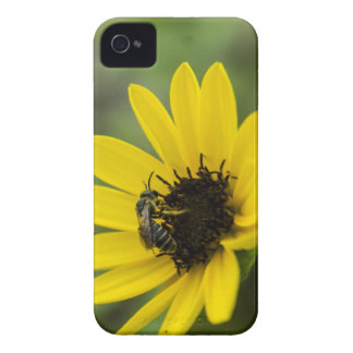 Smell the Flowers Case-Mate iPhone 4 Case