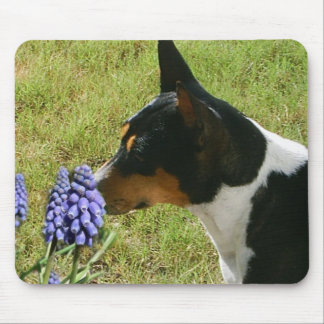 Smell the Flowers Mousepad