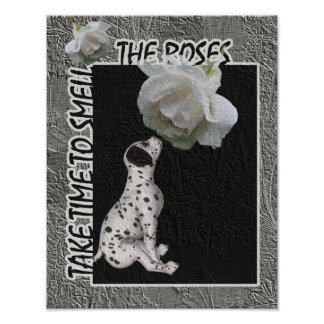 Smell The Roses Dalmatian Puppy Inspirational Poster