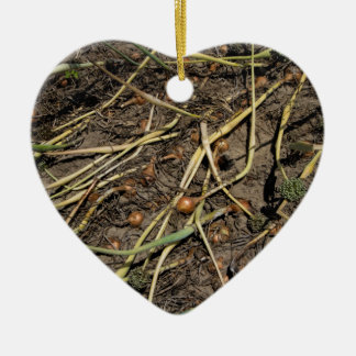 Smelly Onion Crop in the Field Ceramic Heart Ornament