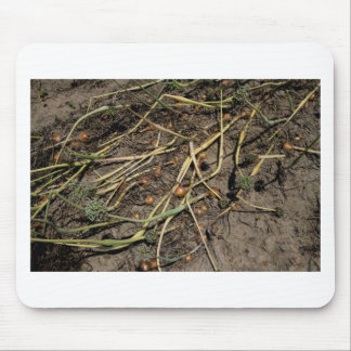 Smelly Onion Crop in the Field Mouse Pad