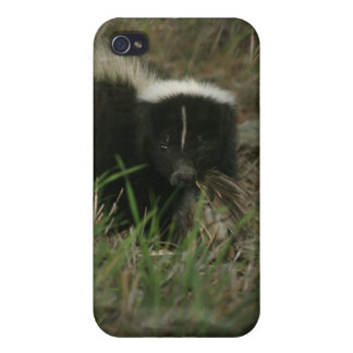 Smelly Skunk iPhone 4 Case