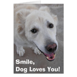 Smile, Dog Loves You! Card
