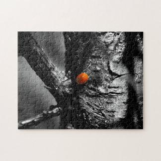 smile for a ladybug jigsaw puzzle