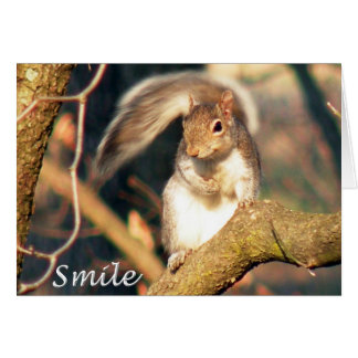 Smile Mr. Squirrel Note Card