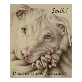 Smile! White Pit bull Drawing on Poster