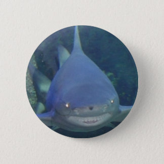 Smiley Shark Button