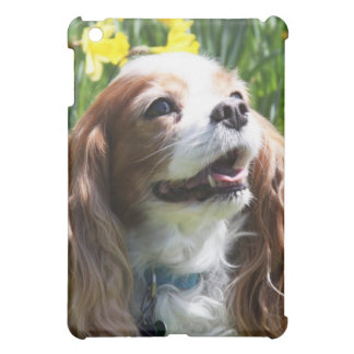 Smiling Blenheim Cavalier King Charles Spaniel Case For The iPad Mini