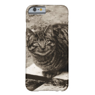 Smiling Cat Barely There iPhone 6 Case