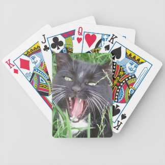 Smiling Cat, Tuxedo Bicycle Playing Cards