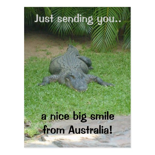Smiling crocodile postcard
