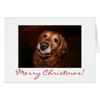 Smiling dog Merry Christmas Card