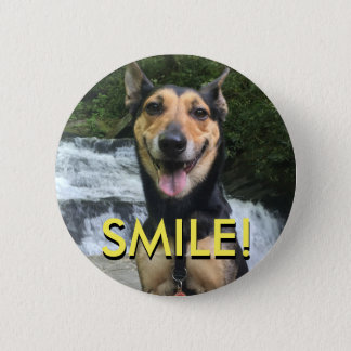 Smiling Dog on Rock 2 Inch Round Button