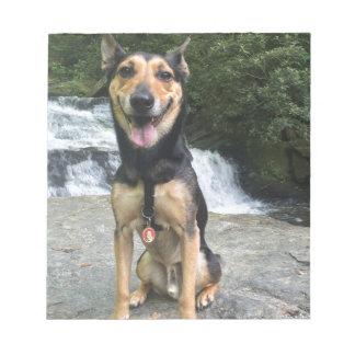 Smiling Dog on Rock Notepad